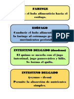 etiquetas digestivo.docx