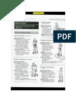 ejercicios_tonificacion.pdf
