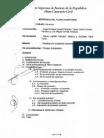 Johan  Camargo Acosta Tribunal Constitucional 5