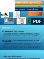 5hipotesis Importancia y Características