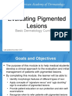 Evaluation of Pigmented Lesions
