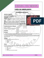 11. Pulmon No Neoplasico.
