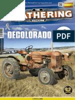 THE WEATHERING Nº 9 DECOLORADO
