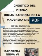 Diagnostico Organizacional de La Empresa Nieva VI