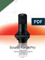 soun forge 10 manual.pdf