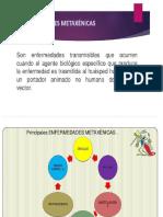 enfermedades metaxenicas  senaida.pptx