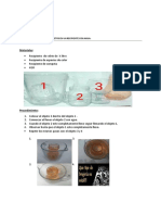 Geología Mine Optica Exp. (2)