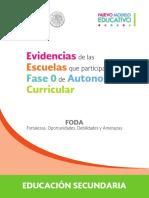 201805-RSC-YvAF3kxJQM-Secundaria_evidencias_autonoma.pdf