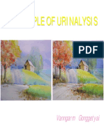 Clin2UAPrinciplesOfUrinalysis.pdf