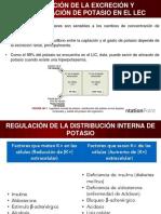Regulación de La Excreción y Concentración de Potasio