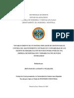 TESIS.II009L50.pdf