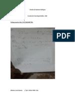 Cátedra de Química Biológica Tp Nro 2