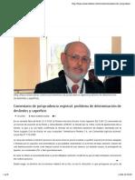 Revista Fojas Comentario Jurisprudencia Deslindes y Superficie