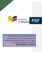 Guia de Rutas y Protocolos
