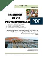 Insertion Et Vie Professionnelle