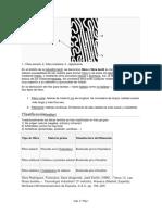 243155426-Fibra-textil-docx.pdf