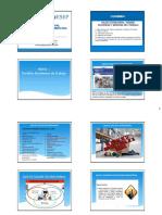 Seguridad y Salud en El Trabajo - Versión 4 Diapositivas Por Página