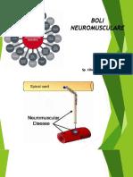 neuromuscular  neurologie spitalul colentina