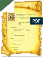 Informe Analisis quimico - UNMSM - Zinc y Plomo.docx