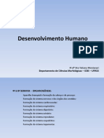 embriologia - slide completo.pdf