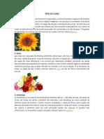 TIPOS DE FLORES.docx