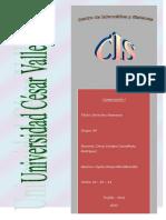 monografa-131110184434-phpapp01