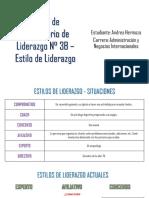Estilo de Liderazgo - Andrea Hermoza