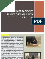 ALIMENTACION DE TOROS DE LIDIA 3.pptx