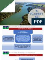 Politica Florestal.pptx