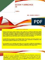 CONSTITUCION Y DERECHOS HUMANOS.pptx