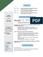 cv-exemple1.doc