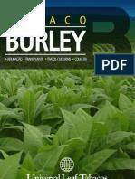 Folder Burley