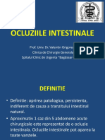 Ocluziile intestinale