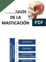 2-Músculos de La Masticación y Atm