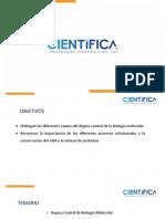 SEMANA_10_-_DOGMA_CENTRAL_BIO_MOL-NEO (1).pptx