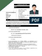 Curriculum Vitae Daniel Gallardo