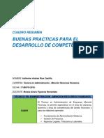 Cuadro Resumen, Buenas Practicas Para El Desarrollo de Competencias