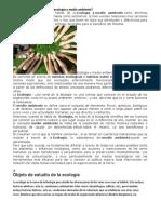 Cuál Es La Relación Entre Ecología y Medio Ambiente