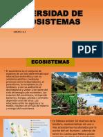 Diversidad de Ecosistemas 6.2