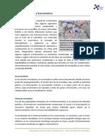 7 Heterocromatina y Eucromatina