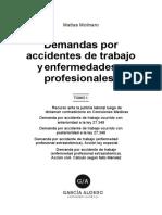 Molinaro Demandas Accidentes Tomo 1