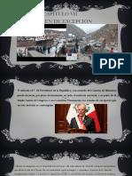 Constitucion Cap. 3 Ferrer