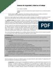 &-Auditorias Internas.pdf