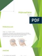 Hidrosefalus PPT