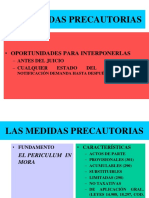 (3) LAS MEDIDAS PRECAUTORIAS.ppt