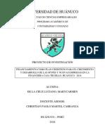 Financiamiento Como Plan Crediticio Para El Crecimiento Y Desarrollo De Las Mypes Y Nuevas Empresas En La Financiera Caja Trujillo. Huanuco - 2018