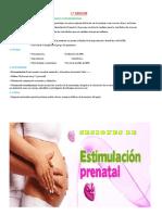 Estimulacion Prenatal I Seccion_ Katty Beneficios Epn