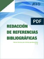 normas iica.pdf