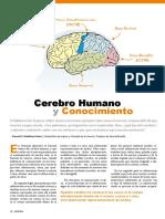 El cerebro y conocimiento.pdf
