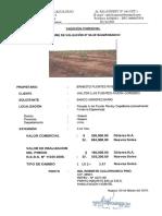 tasacionwfuentesrc.pdf